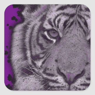 Grunge Purple Abstract Tiger Square Sticker