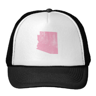 Grunge rosado del vintage de Arizona Gorras