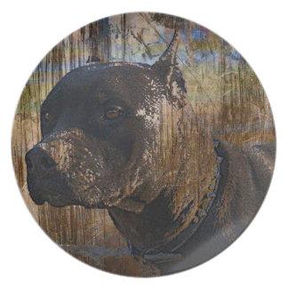 Grunge Staffordshire Terrier americano Pitbull Plato De Comida