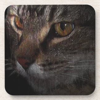 Grunge Tabby Cat Face in Shadow Coaster
