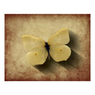 Grunge Yellow Butterfly with Shadow Poster