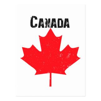 Grungy Canadian Maple Leaf Postcard