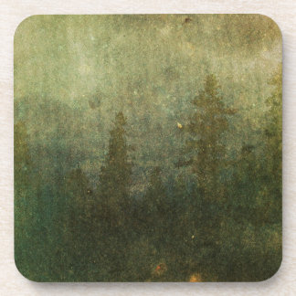 Grungy Pine Forest Coaster