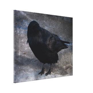 Grungy Raven; No Text Gallery Wrap Canvas