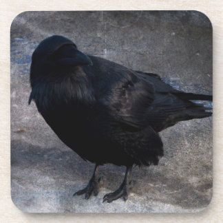 Grungy Raven; No Text Drink Coaster