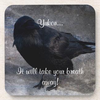 Grungy Raven; Yukon Territory Souvenir Beverage Coaster