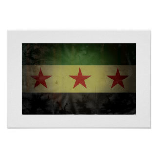 Grungy Syria Flag Print