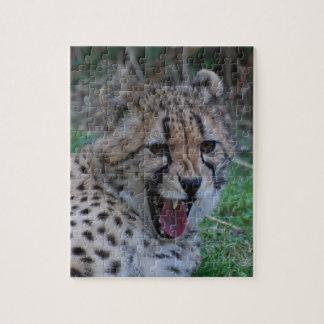 Gruñido del guepardo rompecabezas