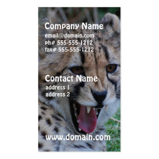 Gruñido del guepardo tarjetas de visita