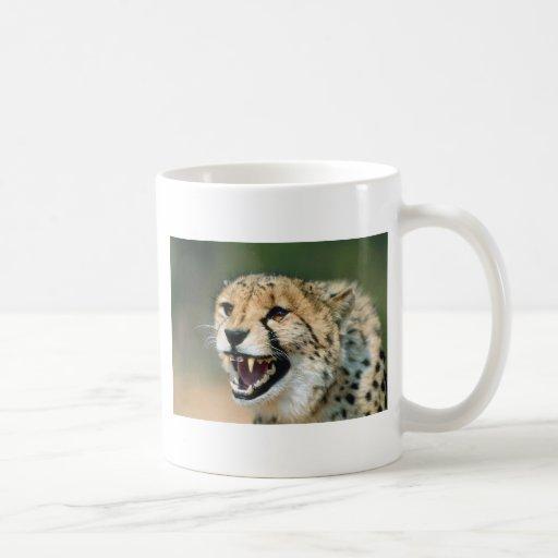 Gruñido del guepardo taza básica blanca