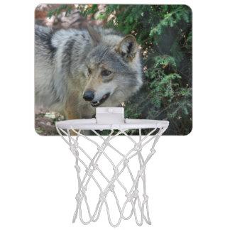 Gruñido del lobo minicanasta