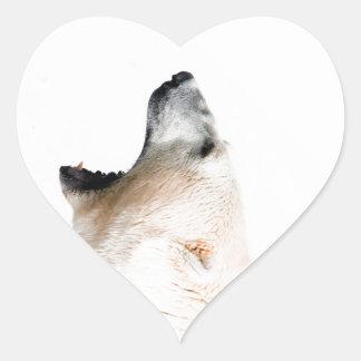 Gruñido del oso polar pegatina en forma de corazón