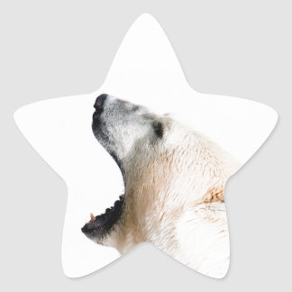 Gruñido del oso polar pegatina en forma de estrella