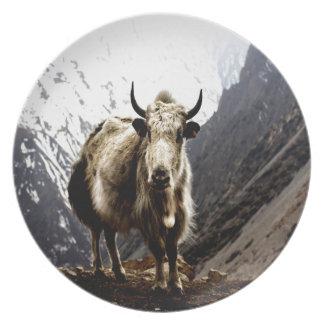 Grunniens valientes del Bos de los yacs del desafi Platos Para Fiestas