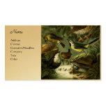 Grupo 3 del pájaro tarjetas de visita
