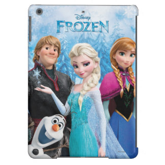 Grupo congelado funda para iPad air