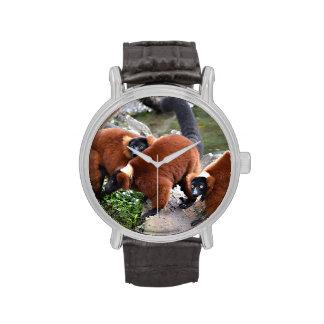 grupo de animal superado rojo de los lemurs c reloj de mano