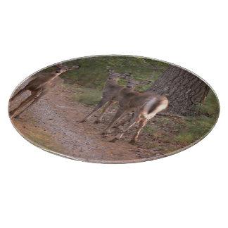 Grupo de ciervos tablas para cortar