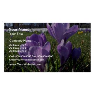 Grupo de flores de las azafranes plantilla de tarjeta de negocio