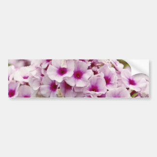 Grupo de flores de las flores etiqueta de parachoque