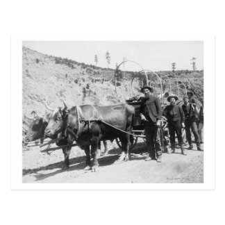 Grupo de fotografía de los prospectores del oro postal