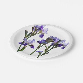 Grupo de iris púrpuras platos de papel
