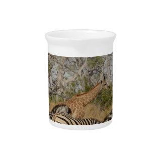 Grupo de las cebras y de la jirafa TomWurl. Jarra De Beber
