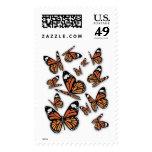 Grupo de mariposas sellos