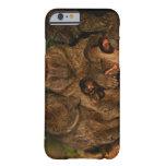 Grupo de observación verde oliva de los babuinos funda de iPhone 6 barely there