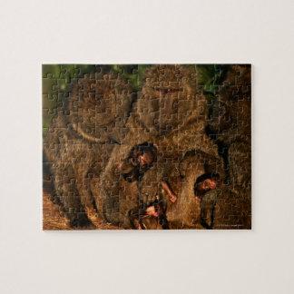 Grupo de observación verde oliva de los babuinos puzzle con fotos