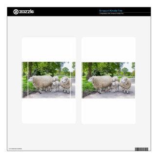 Grupo de ovejas blancas y de cordero en el camino kindle fire pegatinas skins