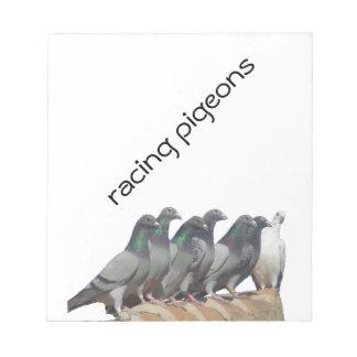 Grupo de palomas mensajeras blocs de papel