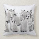 Grupo de pingüinos de emperador (forsteri del Apte Almohada