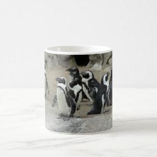 grupo de pingüinos tazas de café