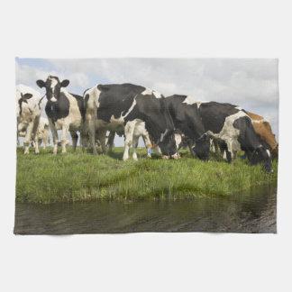 Grupo de vacas frisias toalla de mano