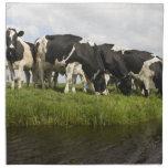 Grupo de vacas frisias servilleta