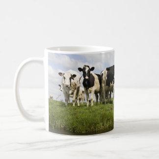 Grupo de vacas frisias taza básica blanca