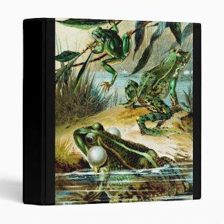 Grupo del vintage de ejemplo de las ranas
