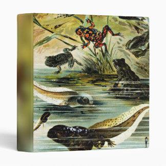 Grupo del vintage de ejemplo de las ranas y de los