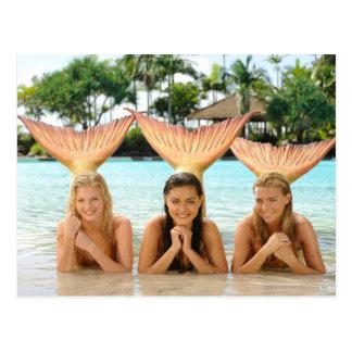 Grupo en la playa tarjeta postal