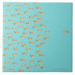 Grupo grande de goldfish que hace frente a un gold azulejo cuadrado grande