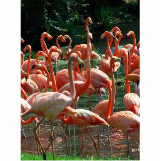 ¡Grupo rosado del flamenco, porciones de imagen de Escultura Fotográfica