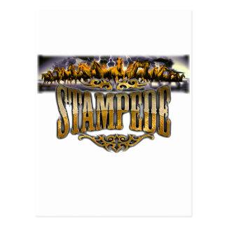 Grupo Stampede Merchandise! Postcard