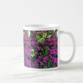Grupos minúsculos de la flor taza de café