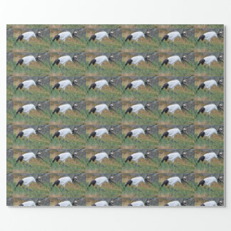 Grus japonensis wrapping paper