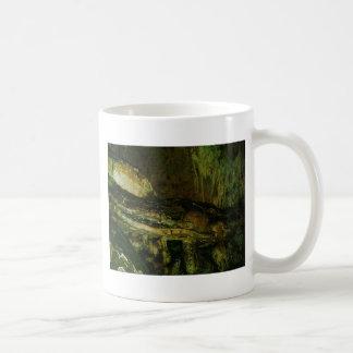 Grutas de la Estrella Cave Formation PICT0083A Mug