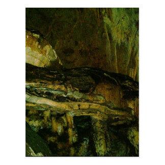 Grutas de la Estrella Cave Formation PICT0083A Postcard
