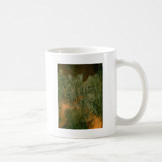 Grutas de la Estrella Cave Formation PICT0089A Mug