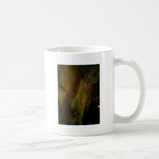 Grutas de la Estrella Cave Formation PICT0099A Mug
