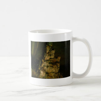 Grutas de la Estrella Cave Formation PICT0108A Coffee Mugs